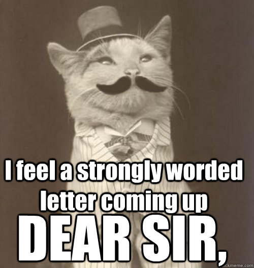 I feel a strongly worded letter coming up DEAR SIR, - I feel a strongly worded letter coming up DEAR SIR,  Original Business Cat