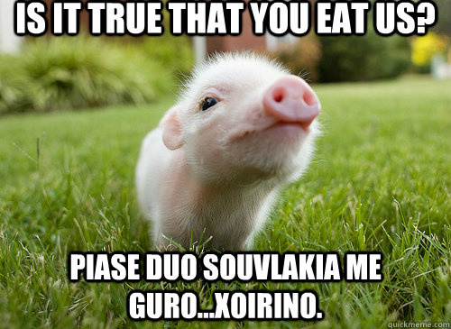 Is it true that you eat us? Piase duo souvlakia me guro...xoirino.