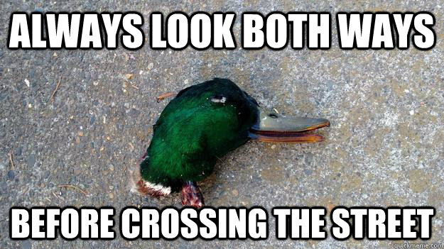 ALWAYS LOOK BOTH WAYS BEFORE CROSSING THE STREET - ALWAYS LOOK BOTH WAYS BEFORE CROSSING THE STREET  DEADVICE MALLARD