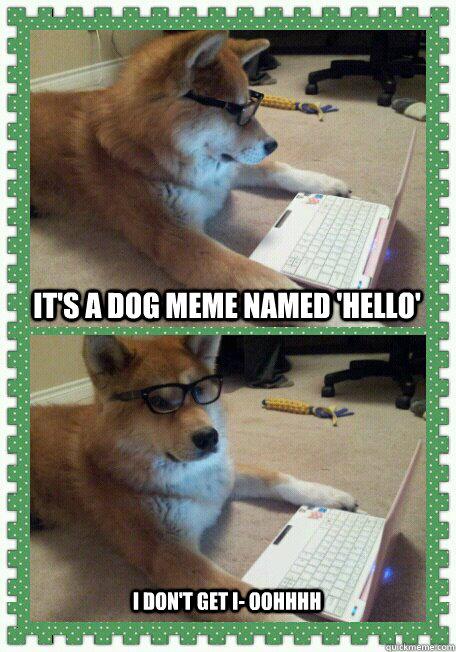 Its A Dog Meme Named Hello I Dont Get I Oohhhh Hello Quickmeme