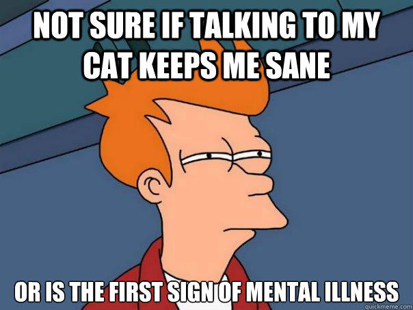 not sure if talking to my cat keeps me sane or is the first sign of mental illness  Futurama Fry