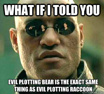 What if I told you Evil plotting bear is the exact same thing as evil plotting raccoon   - What if I told you Evil plotting bear is the exact same thing as evil plotting raccoon    Matrix Morpheus