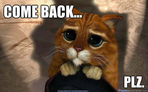 come back... plz.  Sad cat
