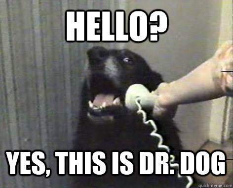 HELLO? Yes, this is Dr. Dog