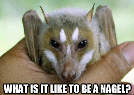 What Is It Like to Be a Nagel? - What Is It Like to Be a Nagel?  Philosophy Bat