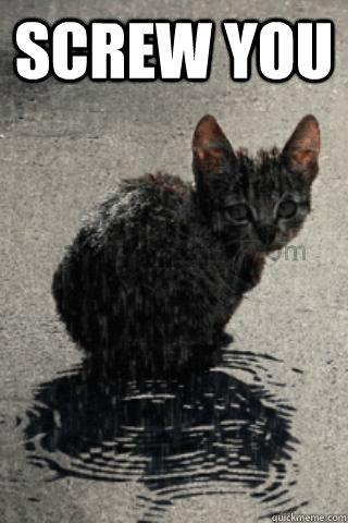 Screw you  - Screw you   wet cat