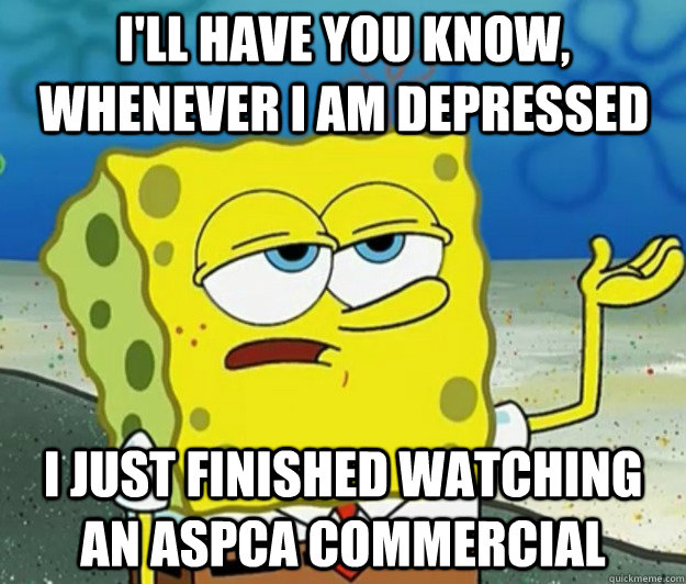 I'll have you know, whenever i am depressed i just finished watching an aspca commercial - I'll have you know, whenever i am depressed i just finished watching an aspca commercial  Tough Spongebob