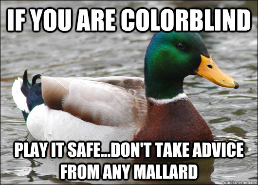 if you are colorblind play it safe...don't take advice from any mallard - if you are colorblind play it safe...don't take advice from any mallard  Actual Advice Mallard
