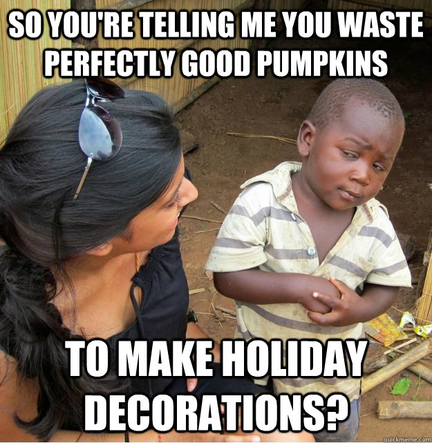 So you're telling me you waste perfectly good pumpkins To make holiday decorations? - So you're telling me you waste perfectly good pumpkins To make holiday decorations?  Skeptical Third World Kid