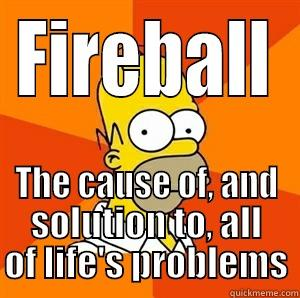 FIREBALL THE CAUSE OF, AND SOLUTION TO, ALL OF LIFE'S PROBLEMS Advice Homer