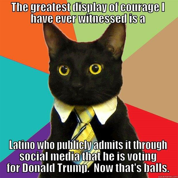 THE GREATEST DISPLAY OF COURAGE I HAVE EVER WITNESSED IS A LATINO WHO PUBLICLY ADMITS IT THROUGH SOCIAL MEDIA THAT HE IS VOTING FOR DONALD TRUMP.  NOW THAT'S BALLS. Business Cat