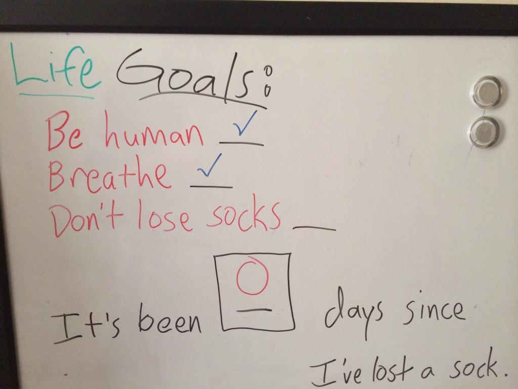 Roommate sets his goals pretty low... -   Misc