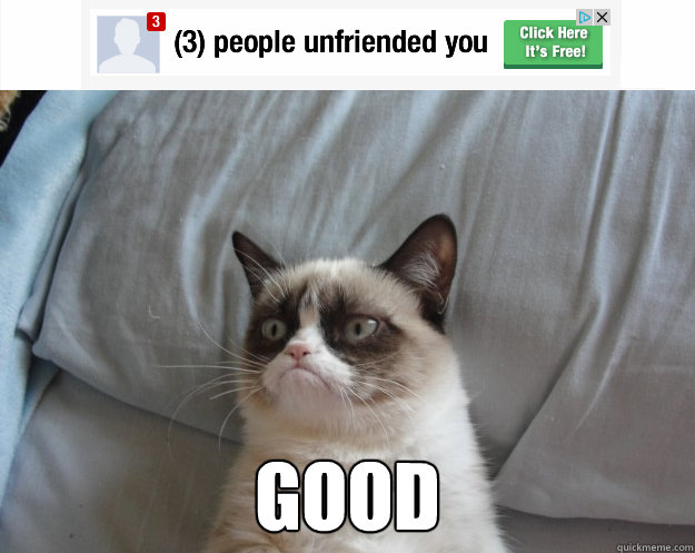 good -  good  Grumpy Cat on Being Unfriended