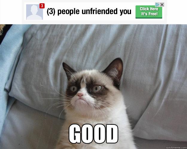 good -  good  Grumpy Cat on Being Unfriended