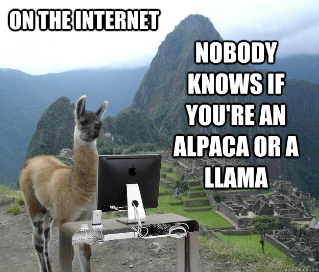 on the internet nobody knows if you're an alpaca or a llama - on the internet nobody knows if you're an alpaca or a llama  Overdramatic Llama Internet Poster