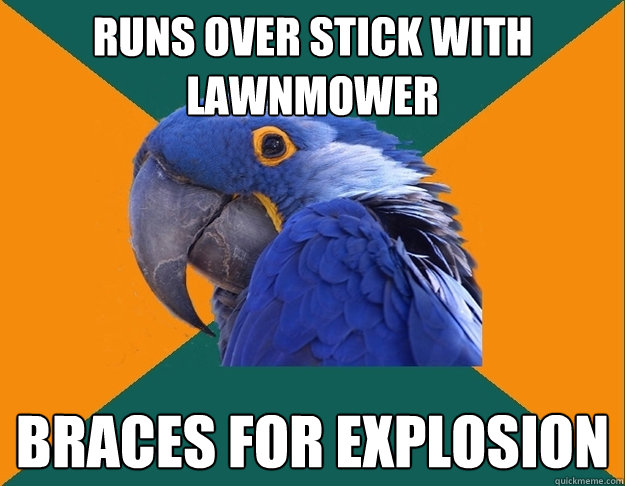 runs over stick with lawnmower braces for explosion - runs over stick with lawnmower braces for explosion  Paranoid Parrot