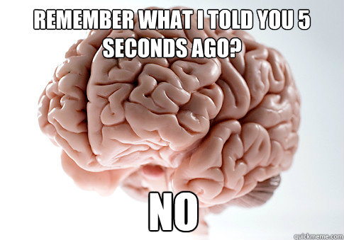 Remember what i told you 5 seconds ago? no - Remember what i told you 5 seconds ago? no  Scumbag Brain
