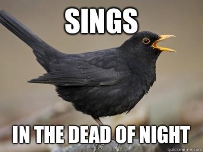 Sings In the dead of night