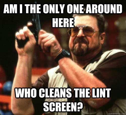 Am i the only one around here who cleans the lint screen? - Am i the only one around here who cleans the lint screen?  Am I The Only One Around Here