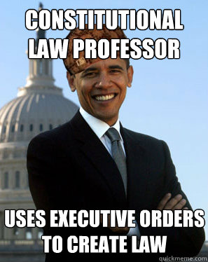 constitutional law professor uses executive orders to create law - constitutional law professor uses executive orders to create law  Scumbag Obama