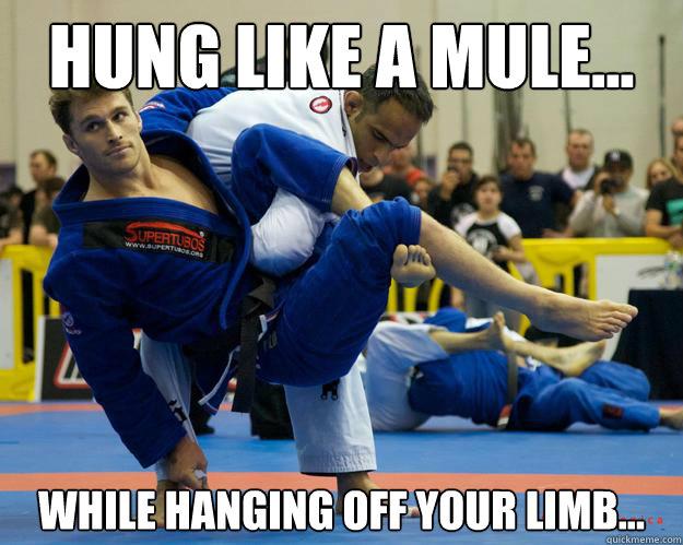 Hung like a mule... While hanging off your limb... - Hung like a mule... While hanging off your limb...  Ridiculously Photogenic Jiu Jitsu Guy
