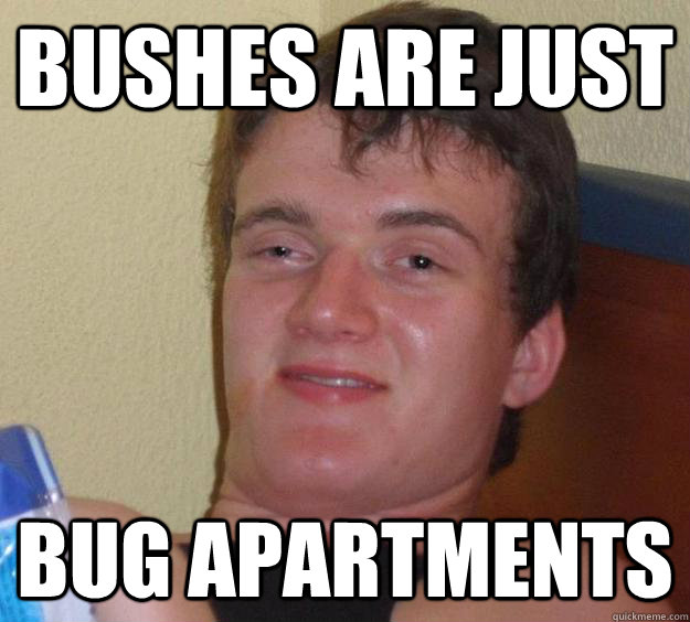 bushes are just bug apartments - bushes are just bug apartments  10 Guy