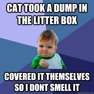 Cat took a dump in the litter box Covered it themselves so i dont smell it - Cat took a dump in the litter box Covered it themselves so i dont smell it  Success Kid