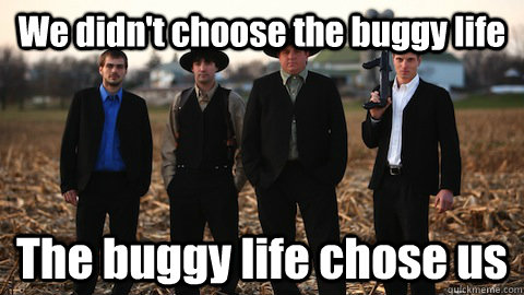 We didn't choose the buggy life The buggy life chose us  Amish MAfia