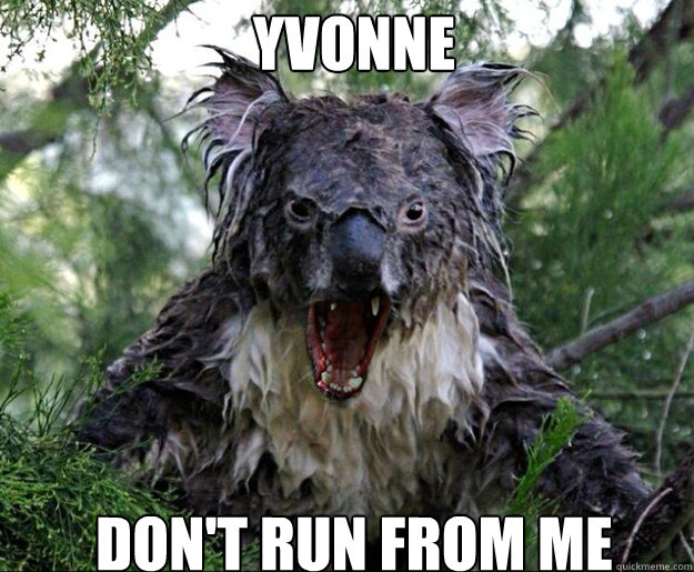 f1449e86899c00c5a191421663c53c6744cd05a6a6e53640633215f22e567f2d yvonne don't run from me wet koala quickmeme