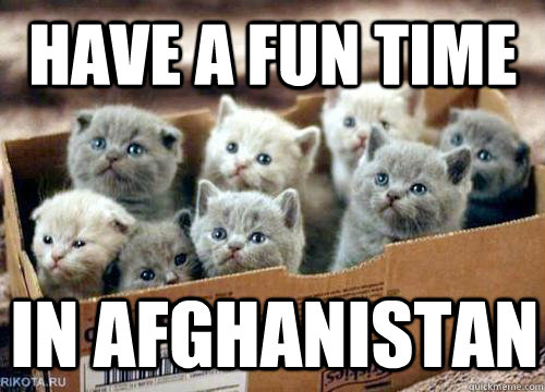 Have a fun time in afghanistan  Box of Kittens