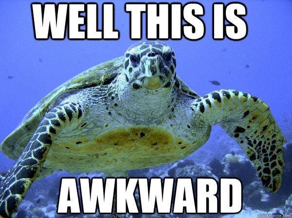 Urban Dictionary awkward turtle