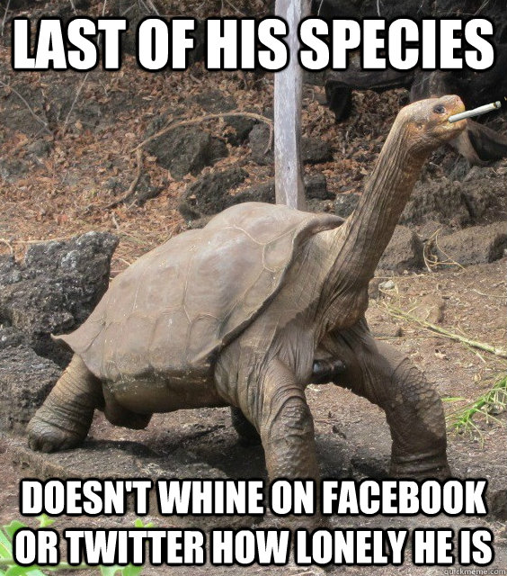 Last of his species doesn't whine on facebook or twitter how lonely he is  Good Guy George