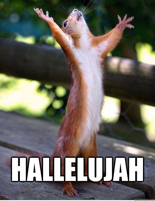 HALLELUJAH   Hallelujah Squirrel