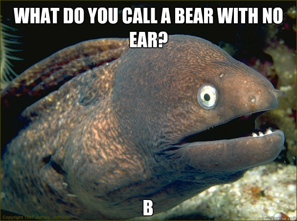 What do you call a Bear with no ear? B - What do you call a Bear with no ear? B  Bad Joke Eel