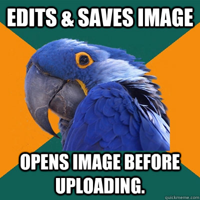 Edits & saves image Opens image before uploading. - Edits & saves image Opens image before uploading.  Paranoid Parrot