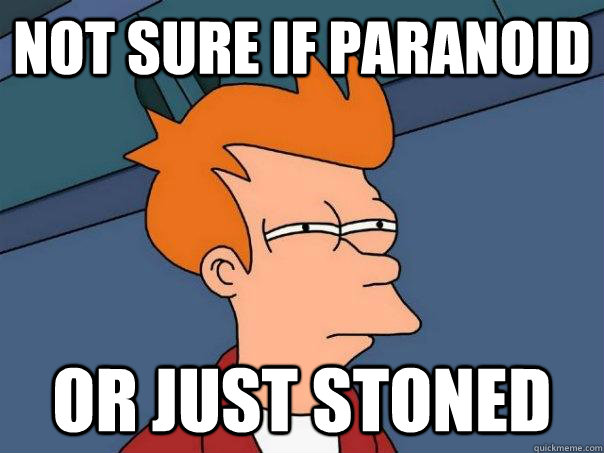 Not sure if paranoid Or just stoned - Not sure if paranoid Or just stoned  Futurama Fry