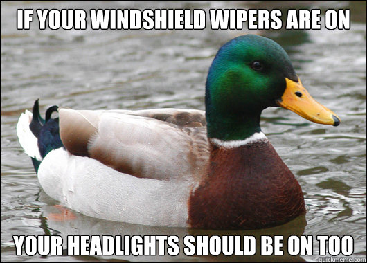 If your windshield wipers are on  Your headlights should be on too - If your windshield wipers are on  Your headlights should be on too  Actual Advice Mallard