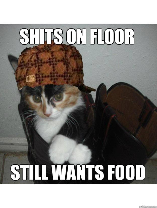 Shits on floor still wants food