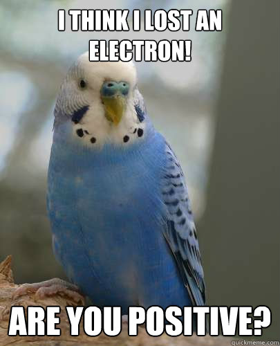 I think I lost an electron! Are You positive? - I think I lost an electron! Are You positive?  Physics Parakeet