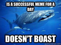 Is a successful meme for a day doesn't boast