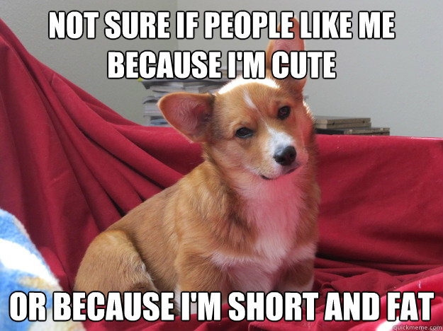 f23eb707d309717280183ded180f073e6a4f5b3f7534eaeb09d159fd685076b5 not sure if people like me because i'm cute or because i'm short