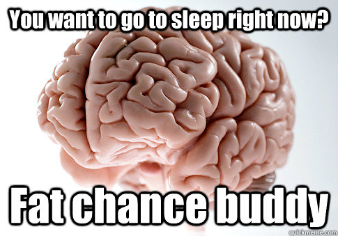 You want to go to sleep right now? Fat chance buddy - You want to go to sleep right now? Fat chance buddy  Scumbag Brain