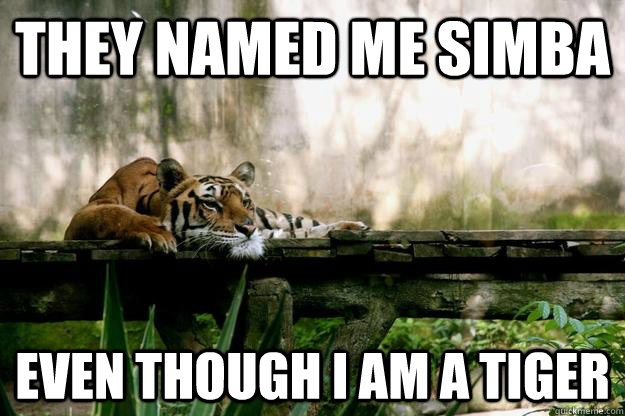 They named me simba even though i am a tiger - They named me simba even though i am a tiger  Depressed Thought Tiger