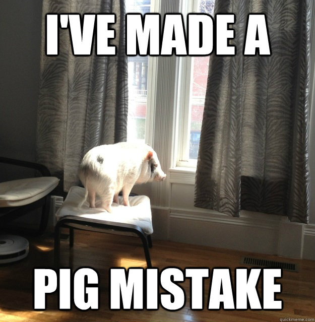 I've made a pig mistake