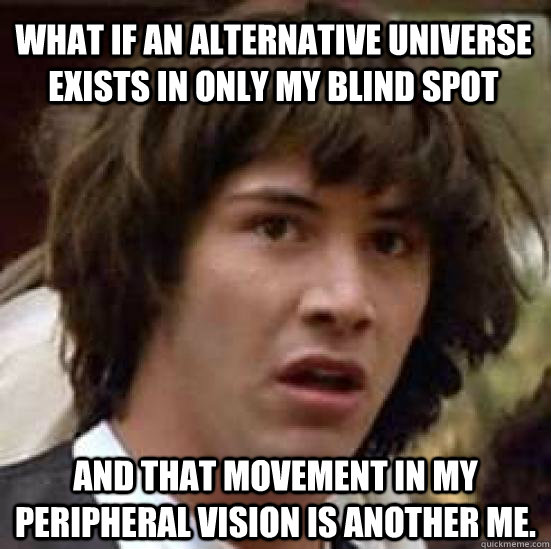 WHAT IF AN ALTERNATIVE UNIVERSE EXISTS IN ONLY MY BLIND SPOT AND THAT MOVEMENT IN MY PERIPHERAL VISION IS ANOTHER ME.  conspiracy keanu