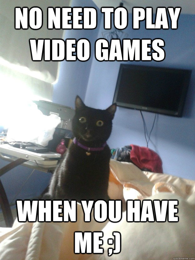 No need to play video games When you have me ;) - No need to play video games When you have me ;)  overly attached cat