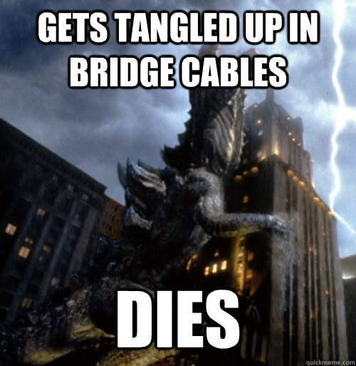 Gets tangled up in bridge cables dies