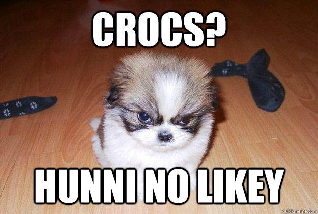 Crocs? Hunni no likey  Angry dog