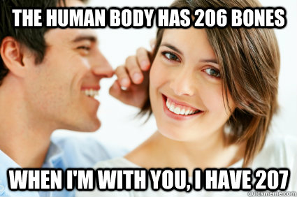 The human body has 206 Bones when i'm with you, i have 207 - The human body has 206 Bones when i'm with you, i have 207  Bad Pick-up line Paul