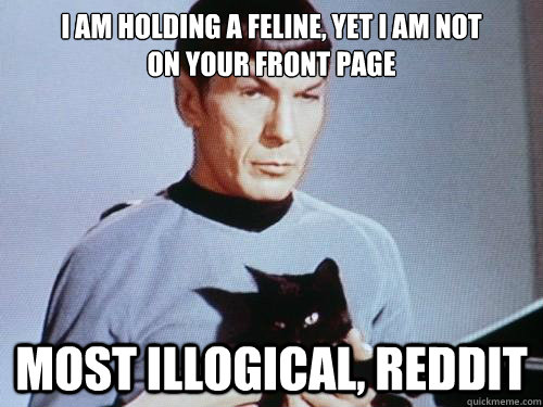 i am holding a feline, yet i am not on your front page most illogical, reddit